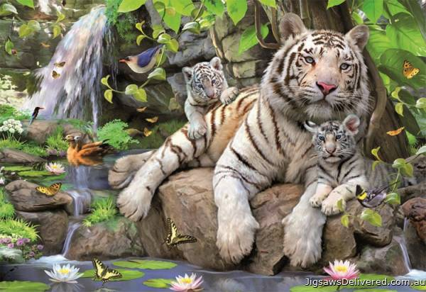 White Tigers of Bengal (EDU14808), a 1000 piece jigsaw puzzle by Educa.