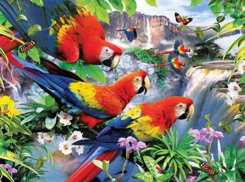 Tropical Birds (Large Pieces) (RB13534-9), a 300 piece jigsaw puzzle by Ravensburger. Click to view larger image.