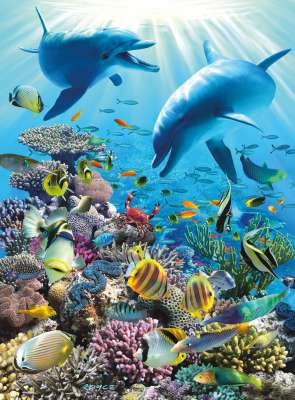 Underwater Adventure (RB13022-1), a 300 piece jigsaw puzzle by Ravensburger. Click to view larger image.