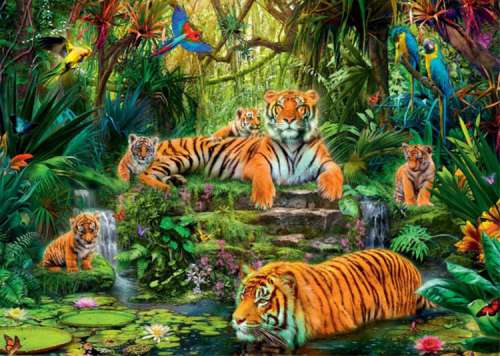 Tiger Family (JUM17245), a 1000 piece jigsaw puzzle by Jumbo. Click to view larger image.