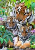 Tiger Family (RB19117-8), a 1000 piece Ravensburger jigsaw puzzle.