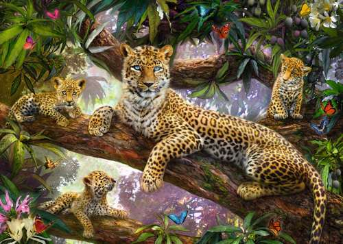 Leopard Family (RB19148-2), a 1000 piece jigsaw puzzle by Ravensburger. Click to view larger image.