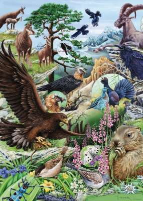 Mountains (Flora and Fauna) (HEY29618), a 1000 piece jigsaw puzzle by HEYE. Click to view larger image.