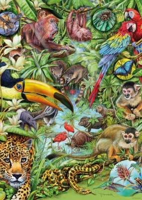 Rainforest (Flora and Fauna) (HEY29617), a 1000 piece jigsaw puzzle by HEYE. Click to view larger image.
