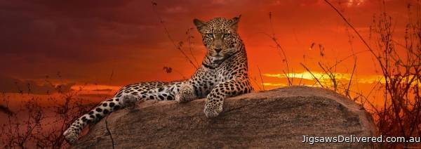 Leopard Red Dawn (HEY29608), a 2000 piece jigsaw puzzle by HEYE.