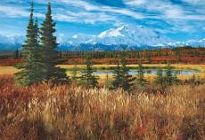 Denali National Park, Alaska (EDU16008), a 1500 piece Educa jigsaw puzzle.