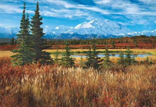 Denali National Park, Alaska (EDU16008), a 1500 piece jigsaw puzzle by Educa. Click to view larger image.