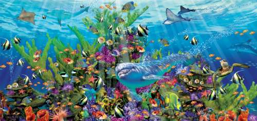 Dolphin Reef (EDU16020), a 3000 piece jigsaw puzzle by Educa. Click to view larger image.