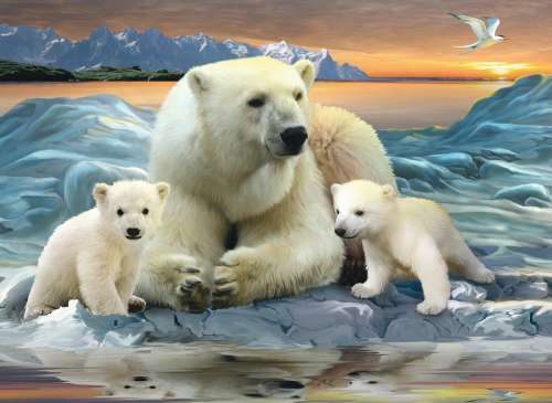 Polar Bears (RB12647-7), a 200 piece jigsaw puzzle by Ravensburger. Click to view larger image.