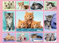 Cute Kittens (RB10530-4), a 100 piece Ravensburger jigsaw puzzle.