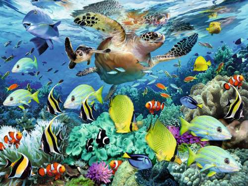 Underwater Paradise (RB10009-5), a 150 piece jigsaw puzzle by Ravensburger. Click to view larger image.