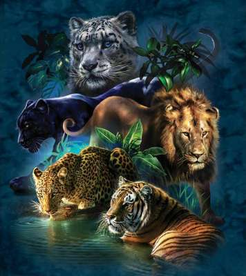Big Cat Prowess (SUN52416), a 1000 piece jigsaw puzzle by Sunsout. Click to view larger image.
