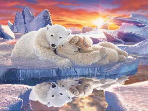 Little Dreamer (Polar Bears) (RB16301-4), a 1500 piece jigsaw puzzle by Ravensburger. Click to view larger image.