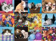 Kitten Collage (RB13197-6), a 300 piece Ravensburger jigsaw puzzle.