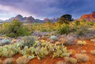 Red Rock Dusk Arizona USA (EDU16324), a 4000 piece Educa jigsaw puzzle.