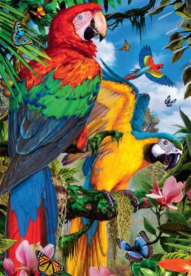 Pretty Parrots (JUM18330), a 1000 piece jigsaw puzzle by Jumbo. Click to view larger image.