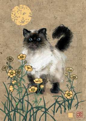 Meadow Cat (HEY29718), a 1000 piece jigsaw puzzle by HEYE. Click to view larger image.