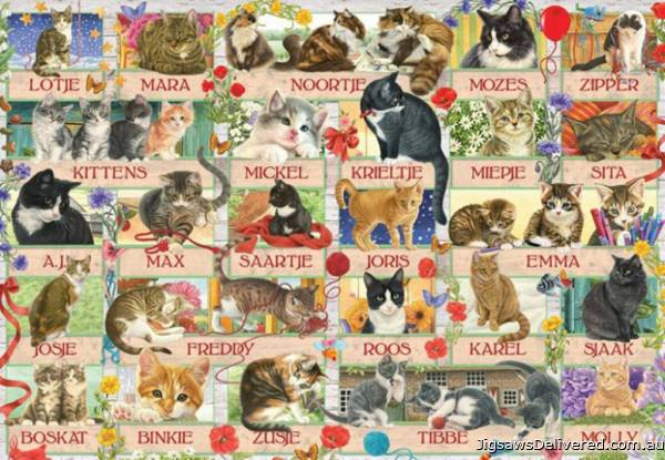 Francien's Cat Anniversary (JUM18324), a 1000 piece jigsaw puzzle by Jumbo.