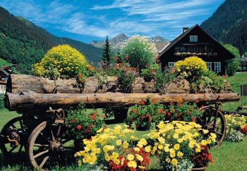 Alpine Flowers (JUM18335), a 1000 piece jigsaw puzzle by Jumbo. Click to view larger image.