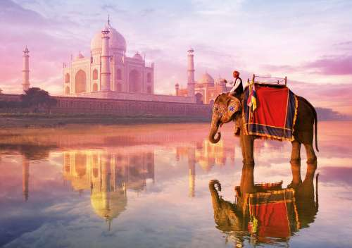 Elephant at Taj Mahal (EDU16756), a 1000 piece jigsaw puzzle by Educa. Click to view larger image.