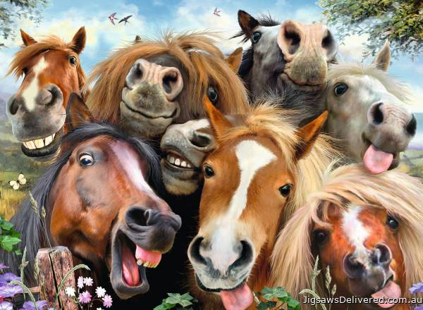 Horsing Around (RB14695-6), a 500 piece jigsaw puzzle by Ravensburger.