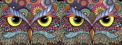 Owl-Rageous (HOL097814), a 748 piece jigsaw puzzle by Holdson. Click to view larger image.