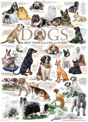 Dog Quotes (COB80096), a 1000 piece jigsaw puzzle by Cobble Hill. Click to view larger image.