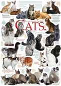 Cat Quotes (COB51795), a 1000 piece Cobble Hill jigsaw puzzle.