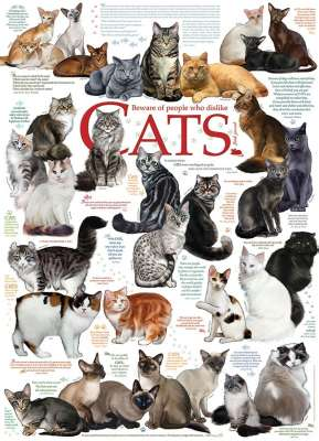 Cat Quotes (COB51795), a 1000 piece jigsaw puzzle by Cobble Hill. Click to view larger image.