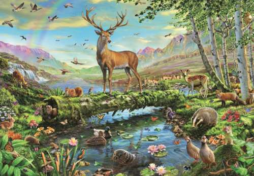 Wildlife Splendour (JUM18357), a 2000 piece jigsaw puzzle by Jumbo. Click to view larger image.