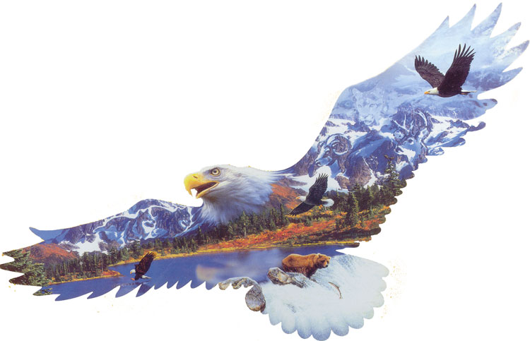 Majestic Flight Bald Eagle Shaped Puzzle Jigsaw By
