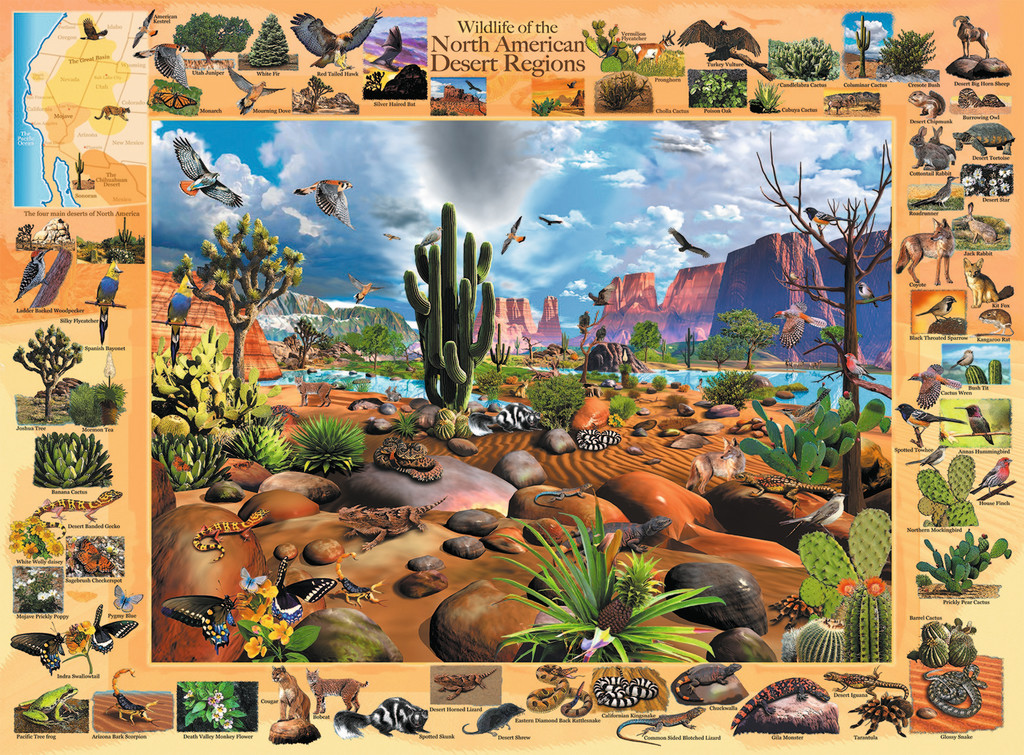 Desert Life Jigsaw By Ravensburger Rb13192 1 300 Pcs